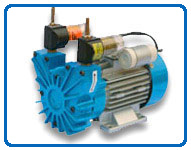 Motor Mounted Oil Free Rotary Vane Vacuum Pumps